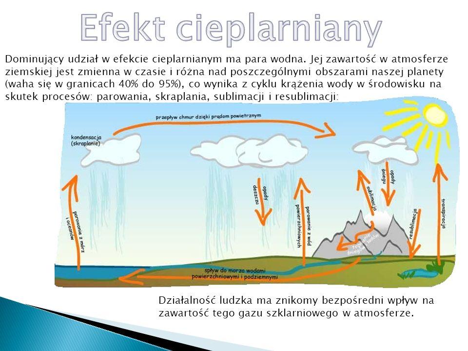 Dwutlenek węgla jest drugim, istotnym dla efektu cieplarnianego składnikiem atmosfery ziemskiej, chociaż jego udział w tym zjawisku jest o rząd wielkości mniejszy od udziału pary wodnej.