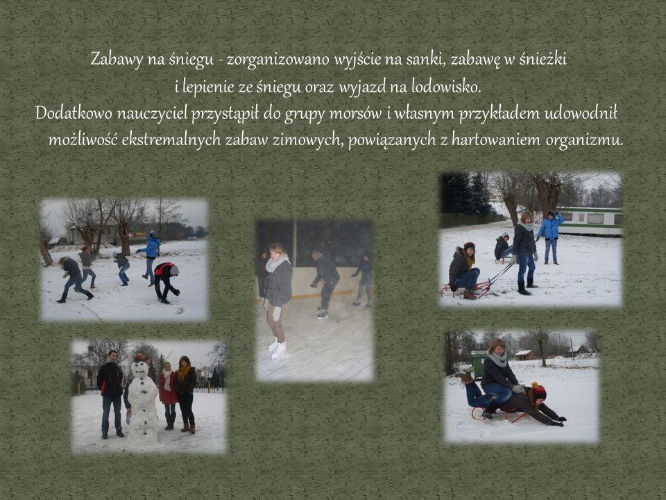 Zabawy na śniegu - zorganizowano wyjście na sanki, zabawę w śnieżki i lepienie ze śniegu oraz wyjazd na lodowisko. Dodatkowo nauczyciel przystąpił do