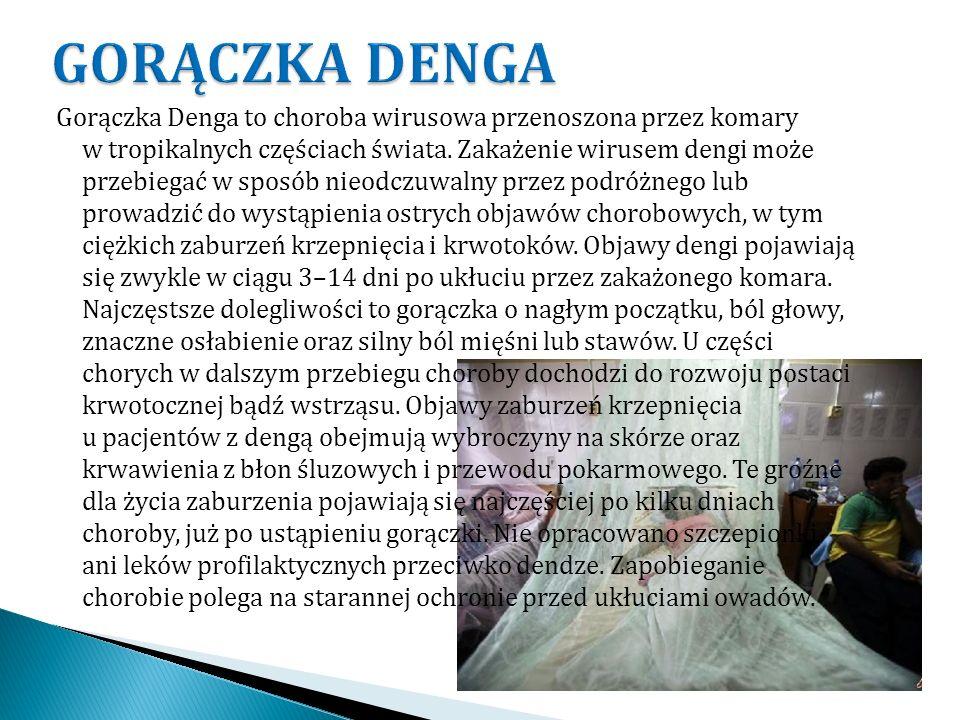Gorączka Denga to choroba wirusowa przenoszona przez komary w tropikalnych częściach świata. Zakażenie wirusem dengi może przebiegać w sposób nieodczu