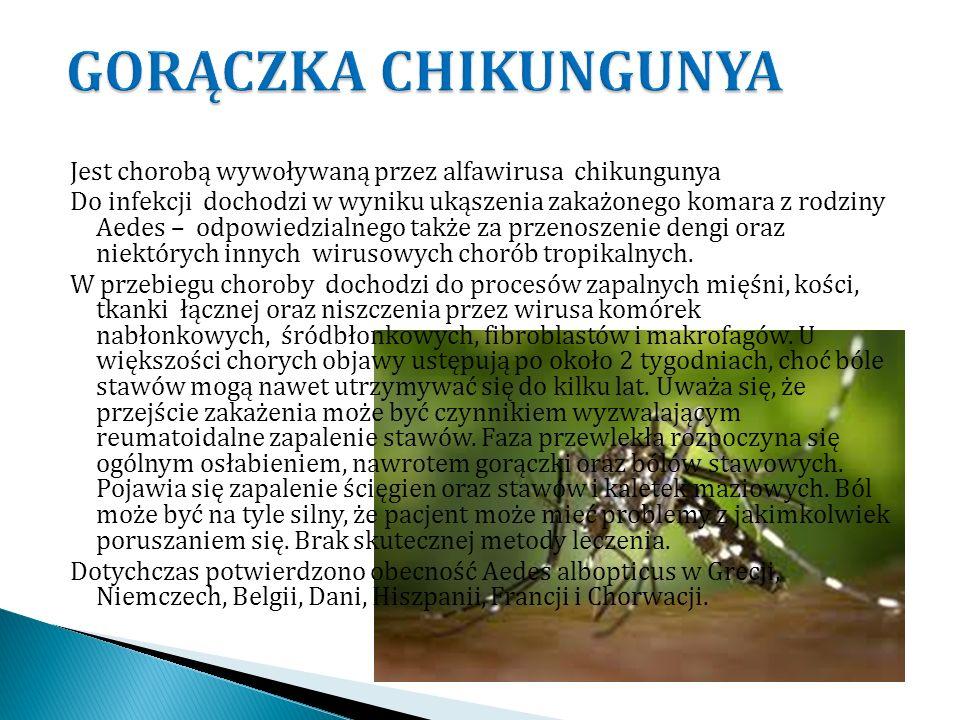 Jest chorobą wywoływaną przez alfawirusa chikungunya Do infekcji dochodzi w wyniku ukąszenia zakażonego komara z rodziny Aedes – odpowiedzialnego takż