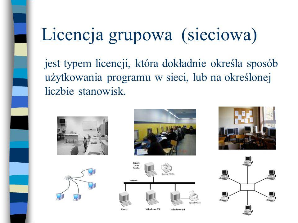 Licencja grupowa (sieciowa) jest typem licencji, która dokładnie określa sposób użytkowania programu w sieci, lub na określonej liczbie stanowisk.