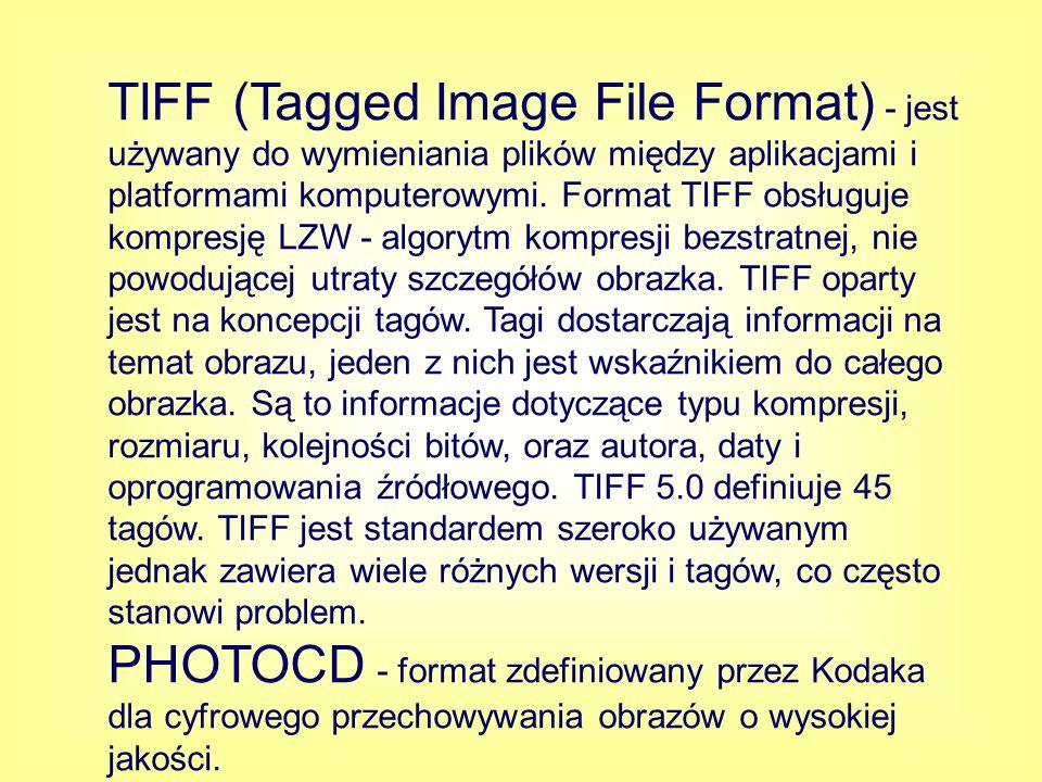 JPEG (Joint Photographic Expert Group) - umożliwia zarówno stratną jak i bezstratną kompresję danych, jednak ta pierwsza daje dużo lepsze rezultaty.