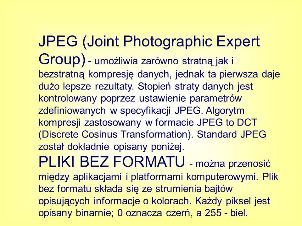 JPEG (Joint Photographic Expert Group) - umożliwia zarówno stratną jak i bezstratną kompresję danych, jednak ta pierwsza daje dużo lepsze rezultaty. S