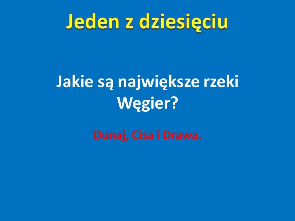 Słynnym daniem węgierskim znanym w Polsce jest… Zupa gulaszowa