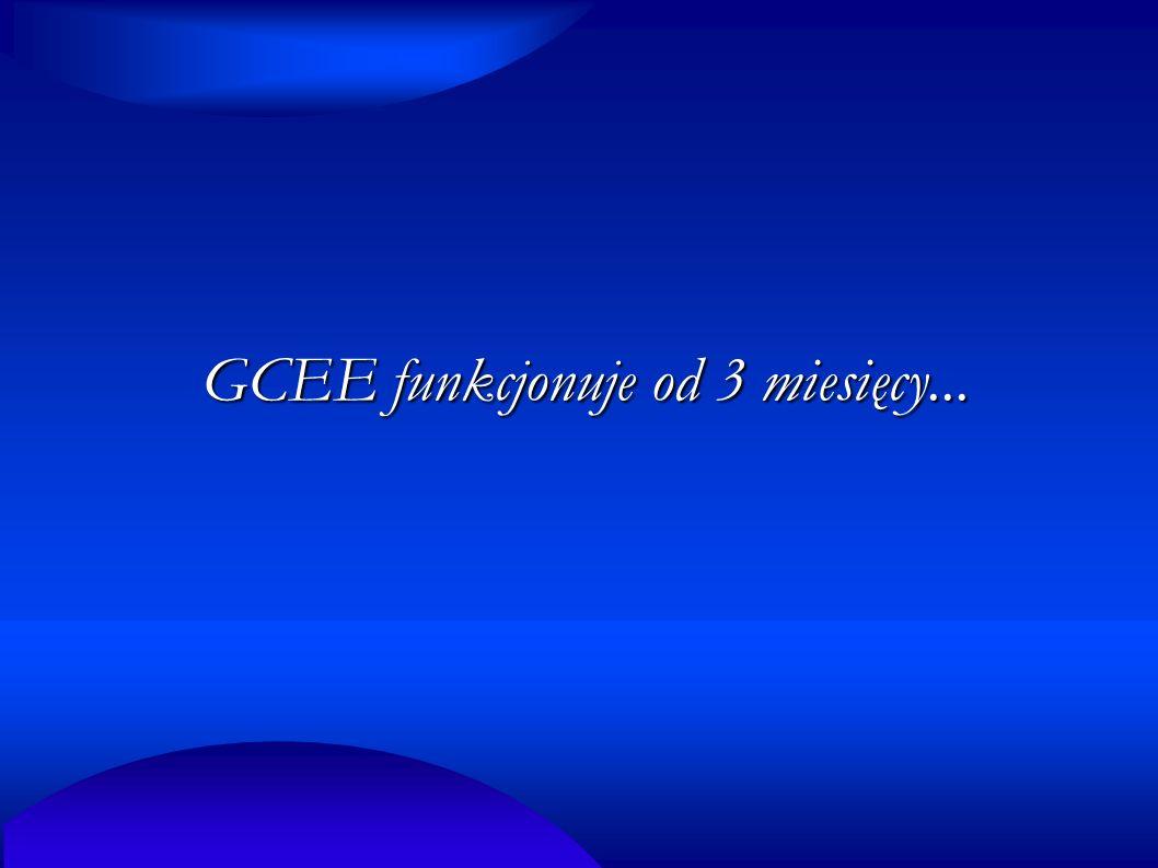 GCEE funkcjonuje od 3 miesięcy...