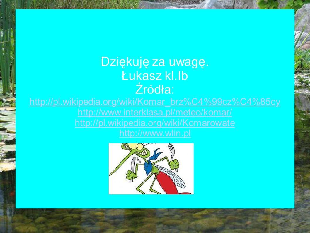 Dziękuję za uwagę. Łukasz kl.Ib Źródła: http://pl.wikipedia.org/wiki/Komar_brz%C4%99cz%C4%85cy http://www.interklasa.pl/meteo/komar/ http://pl.wikiped