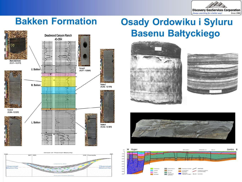 Bakken Formation Osady Ordowiku i Syluru Basenu Bałtyckiego