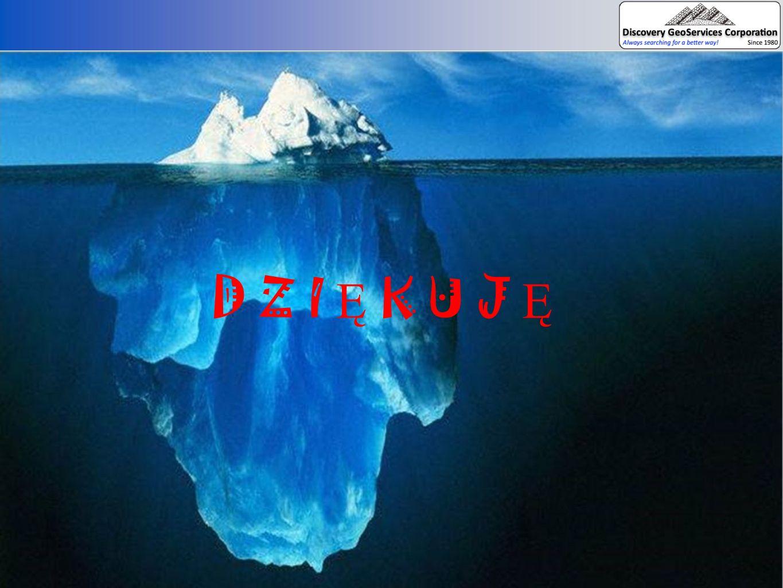 D Z I Ę K U J Ę