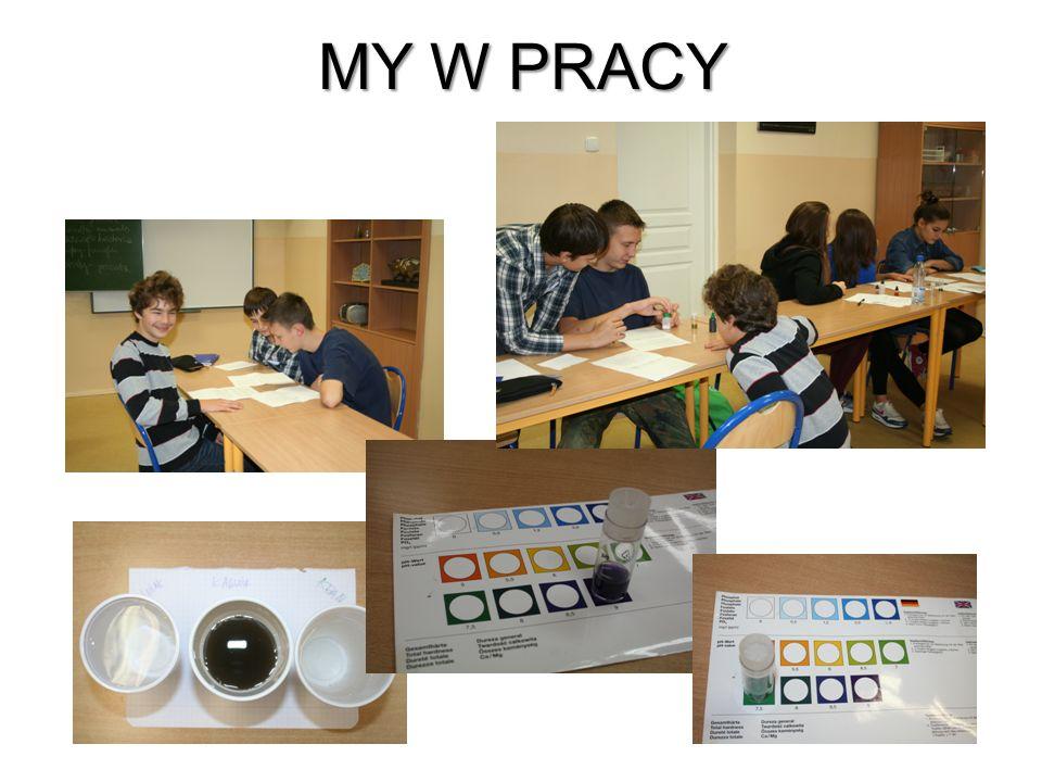 MY W PRACY
