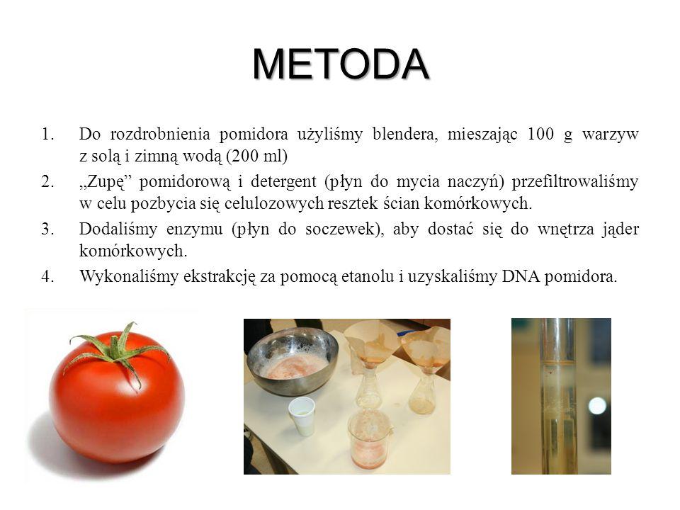METODA 1.Do rozdrobnienia pomidora użyliśmy blendera, mieszając 100 g warzyw z solą i zimną wodą (200 ml) 2.Zupę pomidorową i detergent (płyn do mycia
