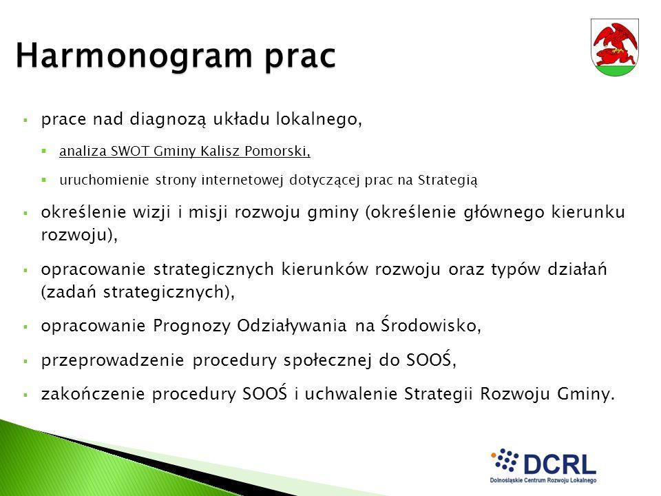 Harmonogram prac prace nad diagnozą układu lokalnego, analiza SWOT Gminy Kalisz Pomorski, uruchomienie strony internetowej dotyczącej prac na Strategi