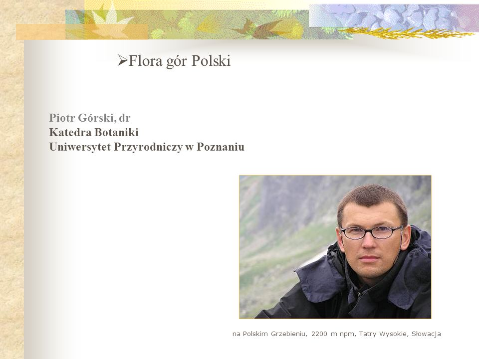 Flora gór Polski Piotr Górski, dr Katedra Botaniki Uniwersytet Przyrodniczy w Poznaniu na Polskim Grzebieniu, 2200 m npm, Tatry Wysokie, Słowacja