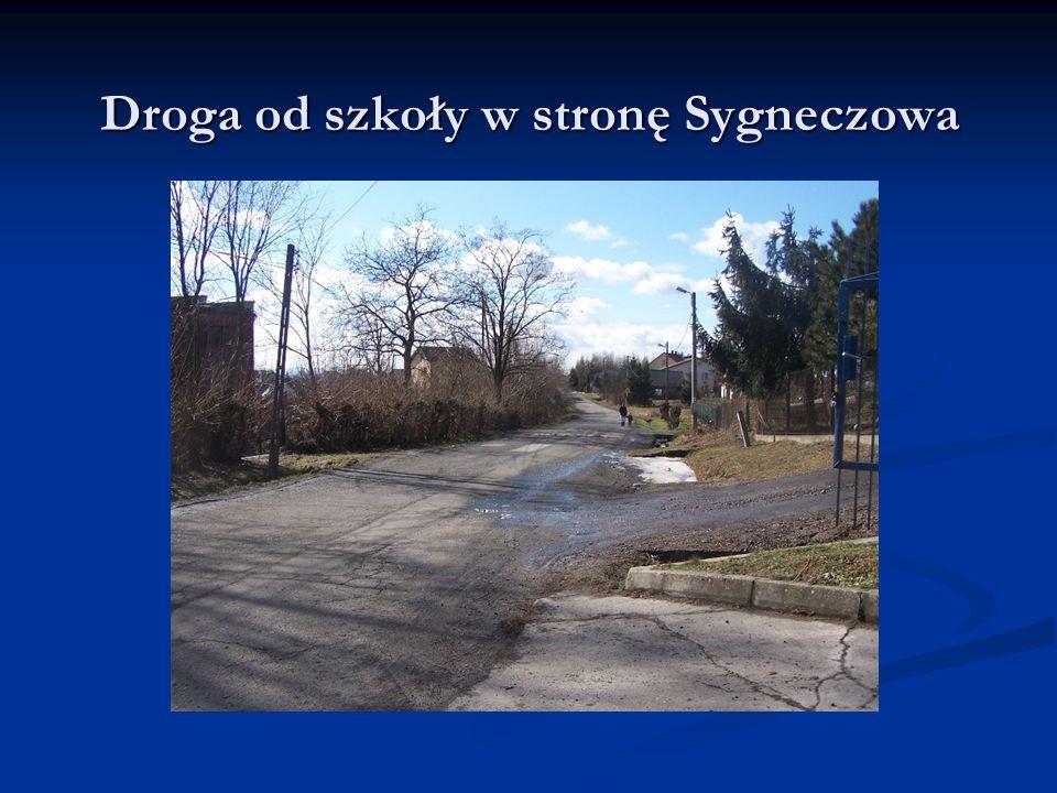 Droga od szkoły w stronę Sygneczowa