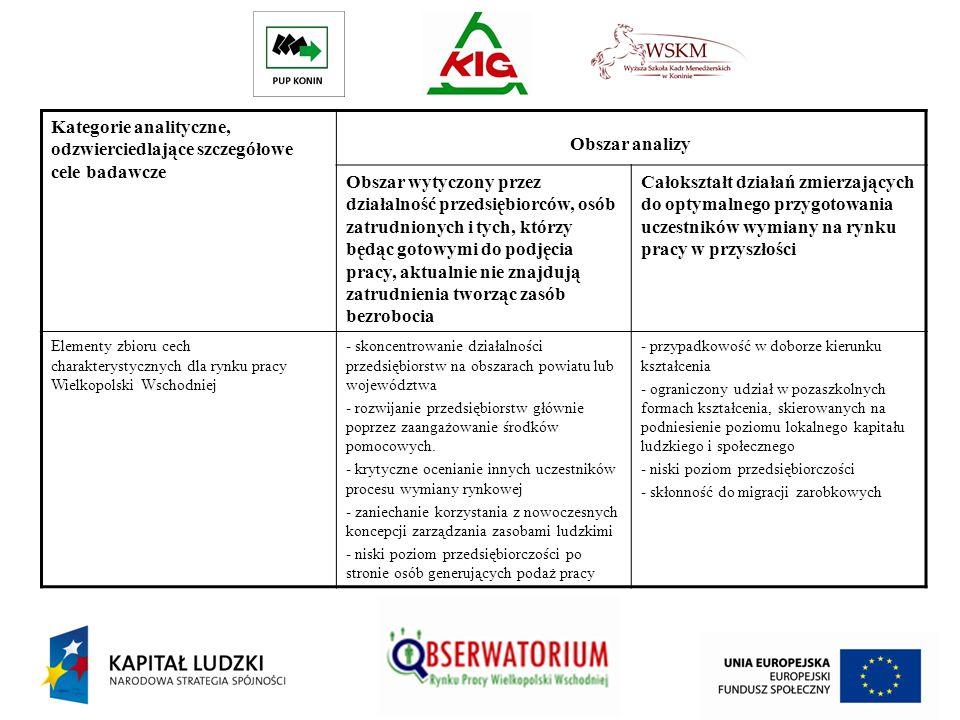 Kategorie analityczne, odzwierciedlające szczegółowe cele badawcze Obszar analizy Obszar wytyczony przez działalność przedsiębiorców, osób zatrudniony