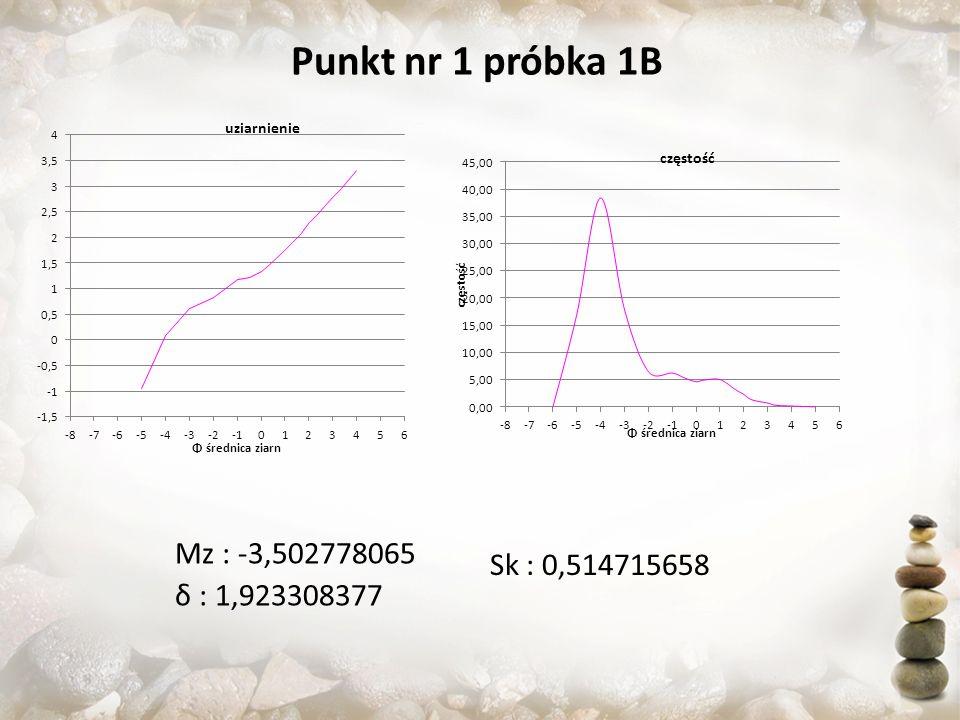 Punkt nr 1 próbka 1B Sk : 0,514715658 Mz : -3,502778065 δ : 1,923308377
