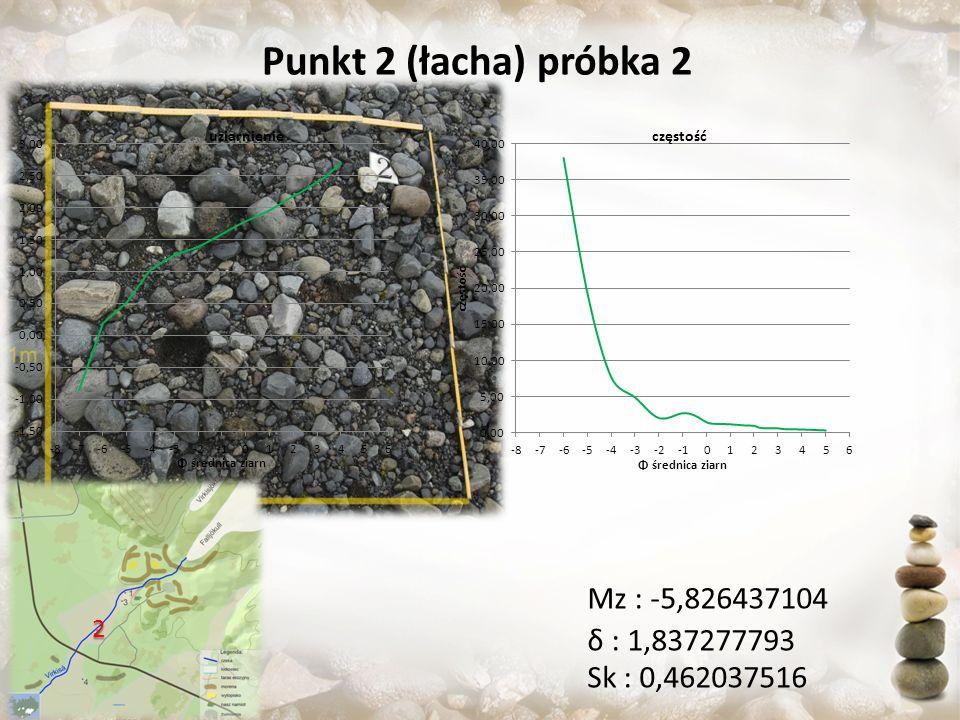 Punkt 2 (łacha) próbka 2 Sk : 0,462037516 Mz : -5,826437104 δ : 1,837277793 2