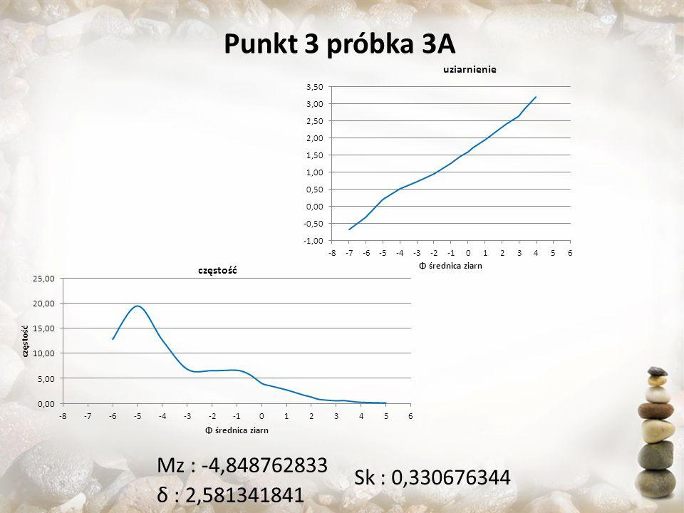 Punkt 3 próbka 3A Sk : 0,330676344 Mz : -4,848762833 δ : 2,581341841