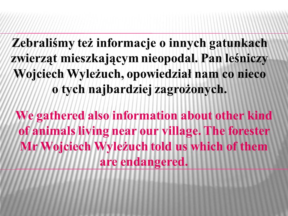 We gathered also information about other kind of animals living near our village. The forester Mr Wojciech Wyleżuch told us which of them are endanger