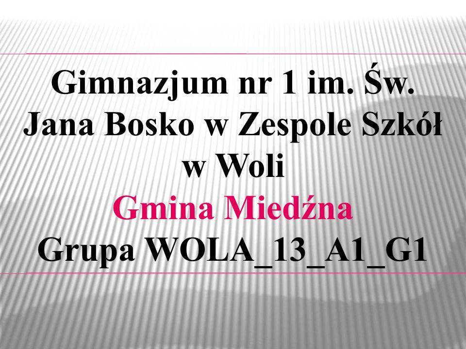 Gimnazjum nr 1 im. Św. Jana Bosko w Zespole Szkół w Woli Gmina Miedźna Grupa WOLA_13_A1_G1