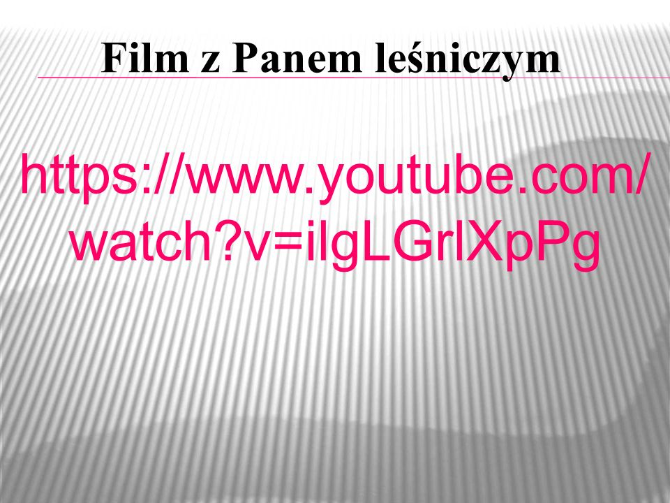 Film z Panem leśniczym https://www.youtube.com/ watch?v=ilgLGrlXpPg