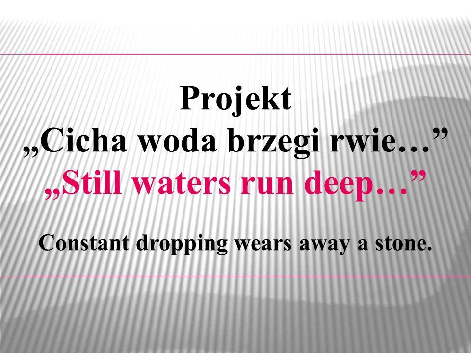 Projekt Cicha woda brzegi rwie… Still waters run deep… Constant dropping wears away a stone.
