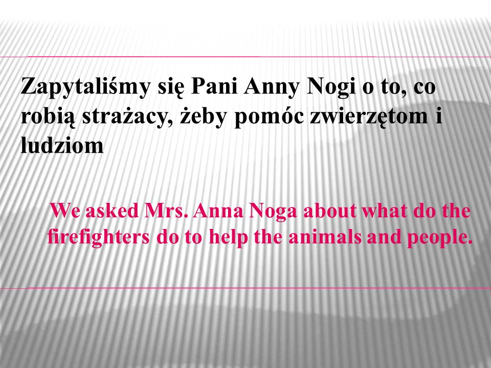 We asked Mrs. Anna Noga about what do the firefighters do to help the animals and people. Zapytaliśmy się Pani Anny Nogi o to, co robią strażacy, żeby