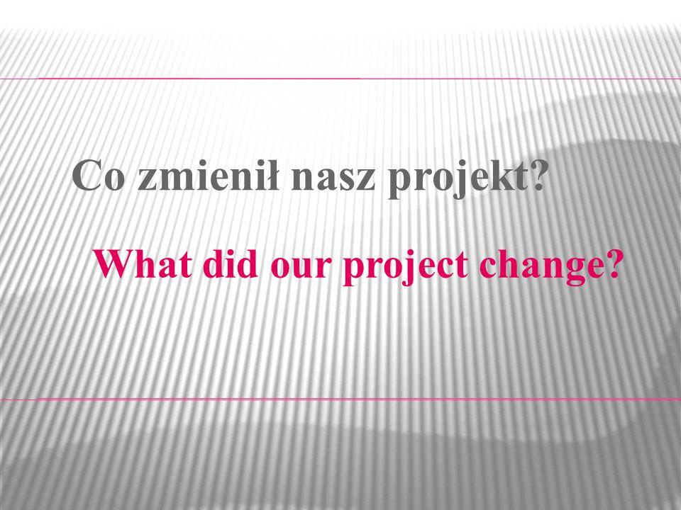 What did our project change? Co zmienił nasz projekt?