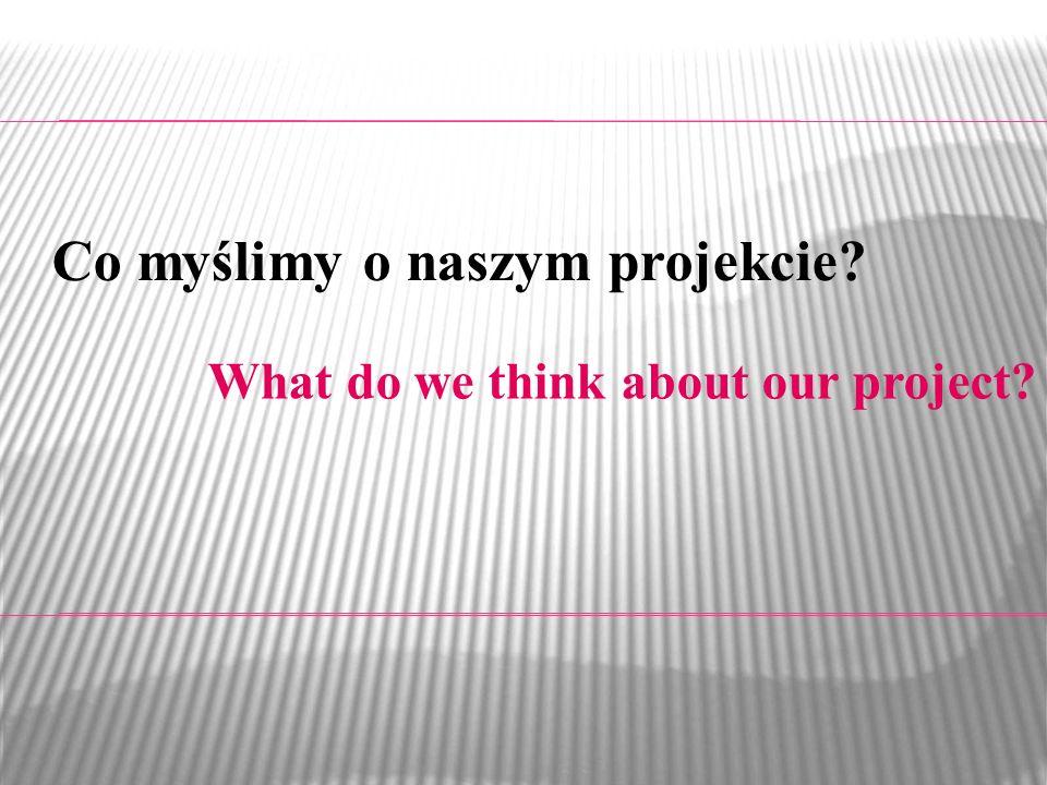 What do we think about our project? Co myślimy o naszym projekcie?