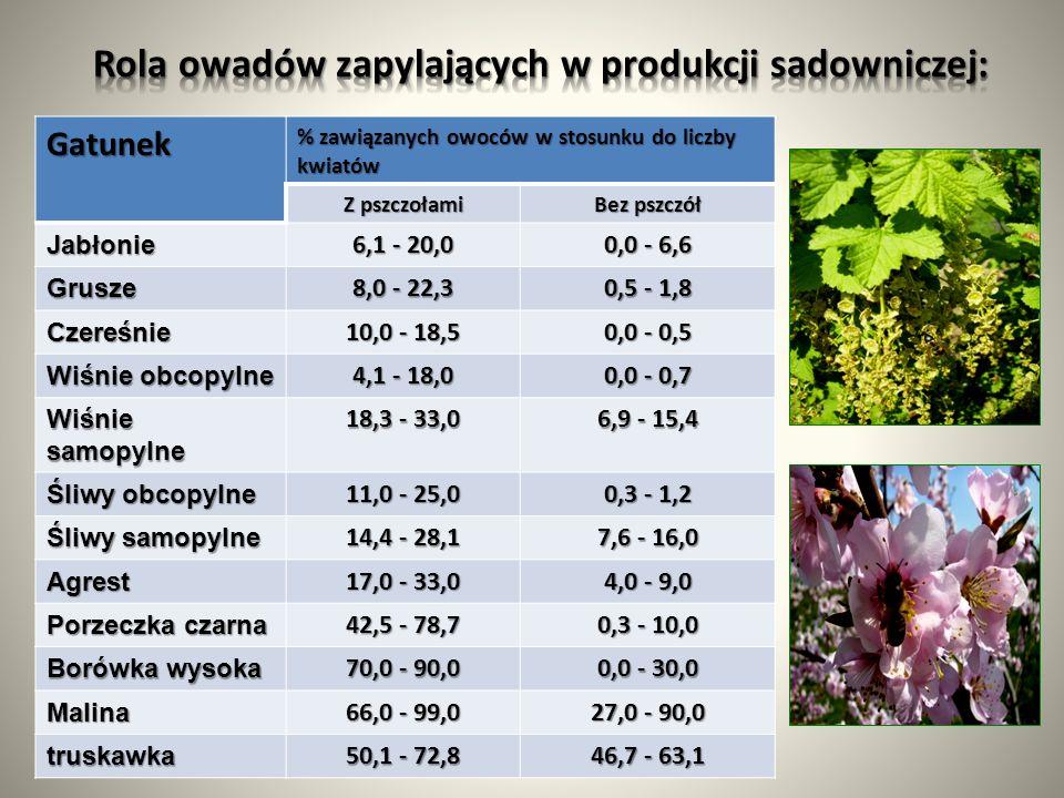 Gatunek % zawiązanych owoców w stosunku do liczby kwiatów Z pszczołami Bez pszczół Jabłonie 6,1 - 20,0 0,0 - 6,6 Grusze 8,0 - 22,3 0,5 - 1,8 Czereśnie 10,0 - 18,5 0,0 - 0,5 Wiśnie obcopylne 4,1 - 18,0 0,0 - 0,7 Wiśnie samopylne 18,3 - 33,0 6,9 - 15,4 Śliwy obcopylne 11,0 - 25,0 0,3 - 1,2 Śliwy samopylne 14,4 - 28,1 7,6 - 16,0 Agrest 17,0 - 33,0 4,0 - 9,0 Porzeczka czarna 42,5 - 78,7 0,3 - 10,0 Borówka wysoka 70,0 - 90,0 0,0 - 30,0 Malina 66,0 - 99,0 27,0 - 90,0 truskawka 50,1 - 72,8 46,7 - 63,1