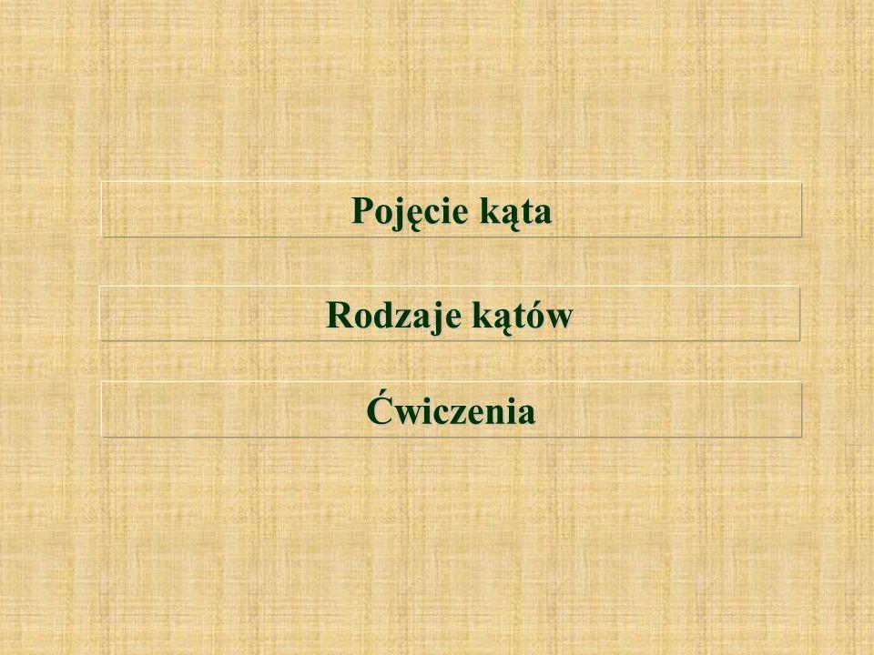 Temat: Pojęcie Kąta. Rodzaje kątów. Opracowała: Aneta Wiśniewska