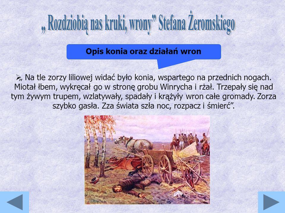 Na tle zorzy liliowej widać było konia, wspartego na przednich nogach.