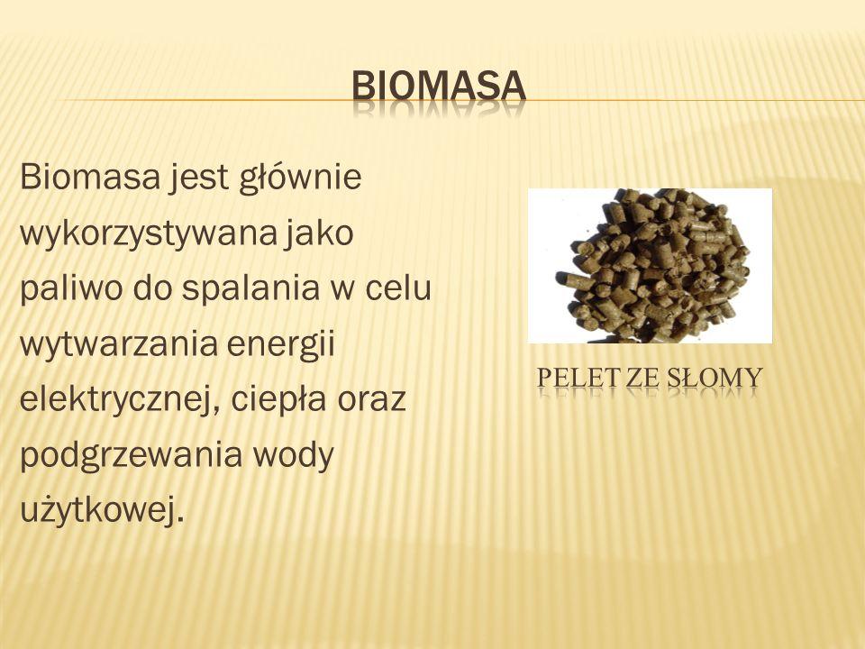 Biomasa jest głównie wykorzystywana jako paliwo do spalania w celu wytwarzania energii elektrycznej, ciepła oraz podgrzewania wody użytkowej.