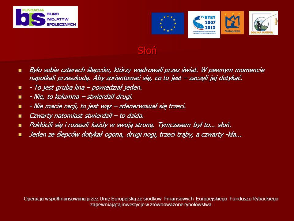 Diagnoza jest potrzebna: -gdy nasze plany nie są jeszcze dookreślone i gdy nie mamy w głowie konkretnych działań -ale: nie szukamy potwierdzeń do projektu Diagnoza to preoces badaczy (co chcemy zbadać, źródła wiedzy, metody-rozmowy z ludźmi, czytanie dokumantów, ankiety, zobaczyć) Operacja współfinansowana przez Unię Europejską ze środków Finansowych Europejskiego Funduszu Rybackiego zapewniającą inwestycje w zrównoważone rybołówstwa