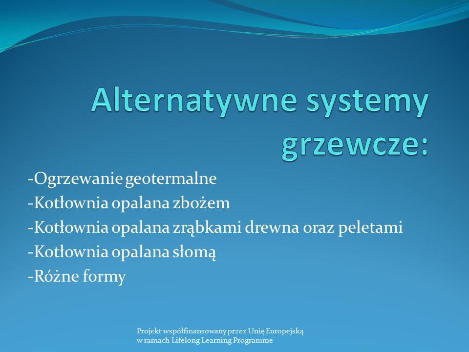 -Ogrzewanie geotermalne -Kotłownia opalana zbożem -Kotłownia opalana zrąbkami drewna oraz peletami -Kotłownia opalana słomą -Różne formy Projekt współfinansowany przez Unię Europejską w ramach Lifelong Learning Programme