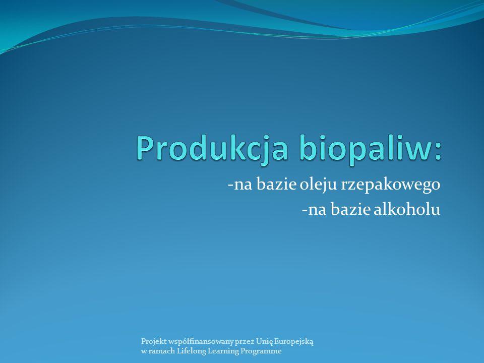 -na bazie oleju rzepakowego -na bazie alkoholu Projekt współfinansowany przez Unię Europejską w ramach Lifelong Learning Programme