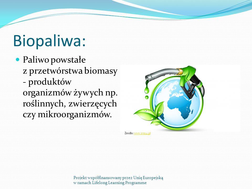 Biopaliwa: Paliwo powstałe z przetwórstwa biomasy - produktów organizmów żywych np.