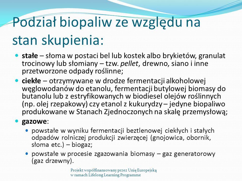 Podział biopaliw ze względu na stan skupienia: stałe – słoma w postaci bel lub kostek albo brykietów, granulat trocinowy lub słomiany – tzw.