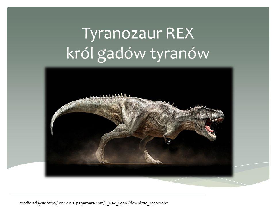 Dinozaur to nie tylko duży, wymarły gad.Zalicznany jest do gadów naczelnych.