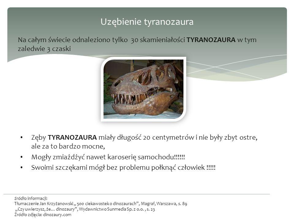 Uzębienie tyranozaura Na całym świecie odnaleziono tylko 30 skamieniałości TYRANOZAURA w tym zaledwie 3 czaski źródło informacji: Tłumaczenie Jan Krzyżanowski 500 ciekawostek o dinozaurach, Magraf, Warszawa, s.