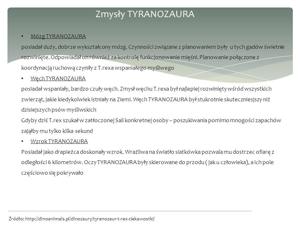Zmysły TYRANOZAURA Mózg TYRANOZAURA posiadał duży, dobrze wykształcony mózg.