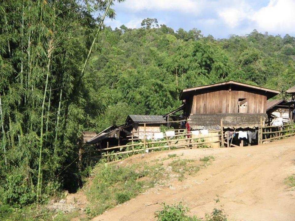 W północnej j części Tallandii znajduje się wioska zamieszkała przez uciekinierów z Birmy - plemię Padaung (zaliczane do grupy etnicznej Karenów), zna