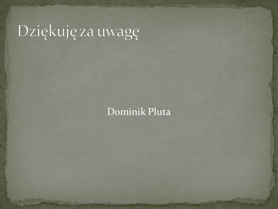 Dominik Pluta