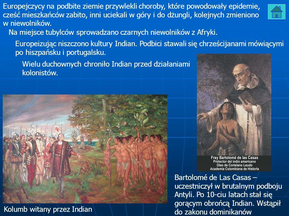 Europejczycy na podbite ziemie przywlekli choroby, które powodowały epidemie, cześć mieszkańców zabito, inni uciekali w góry i do dżungli, kolejnych z