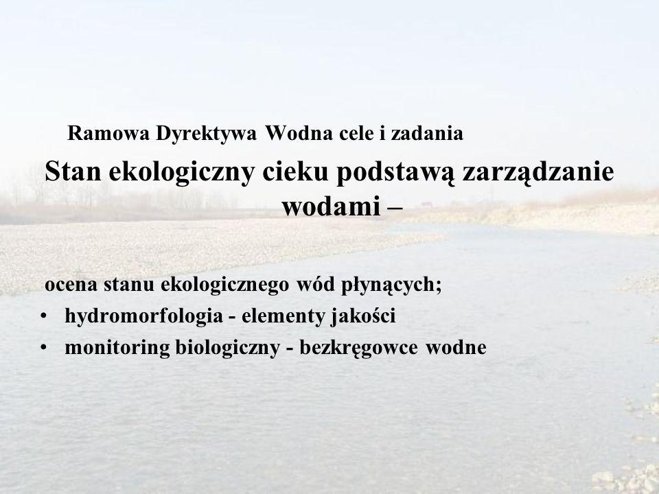 Ramowa Dyrektywa Wodna cele i zadania Stan ekologiczny cieku podstawą zarządzanie wodami – ocena stanu ekologicznego wód płynących; hydromorfologia - elementy jakości monitoring biologiczny - bezkręgowce wodne