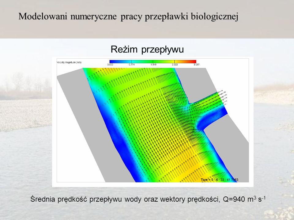 Modelowani numeryczne pracy przepławki biologicznej Reżim przepływu Średnia prędkość przepływu wody oraz wektory prędkości, Q=940 m 3 s -1