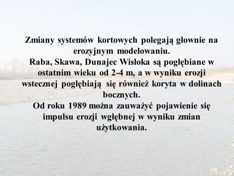 Zmiany systemów kortowych polegają głownie na erozyjnym modelowaniu. Raba, Skawa, Dunajec Wisłoka są pogłębiane w ostatnim wieku od 2-4 m, a w wyniku