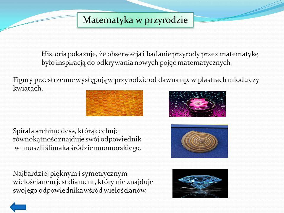 Matematyka w przyrodzie Historia pokazuje, że obserwacja i badanie przyrody przez matematykę było inspiracją do odkrywania nowych pojęć matematycznych