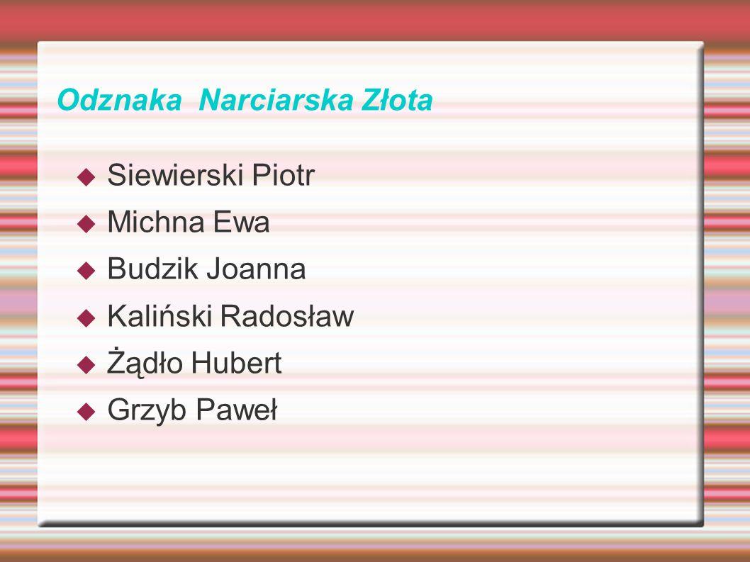 Odznaka Narciarska Złota Siewierski Piotr Michna Ewa Budzik Joanna Kaliński Radosław Żądło Hubert Grzyb Paweł