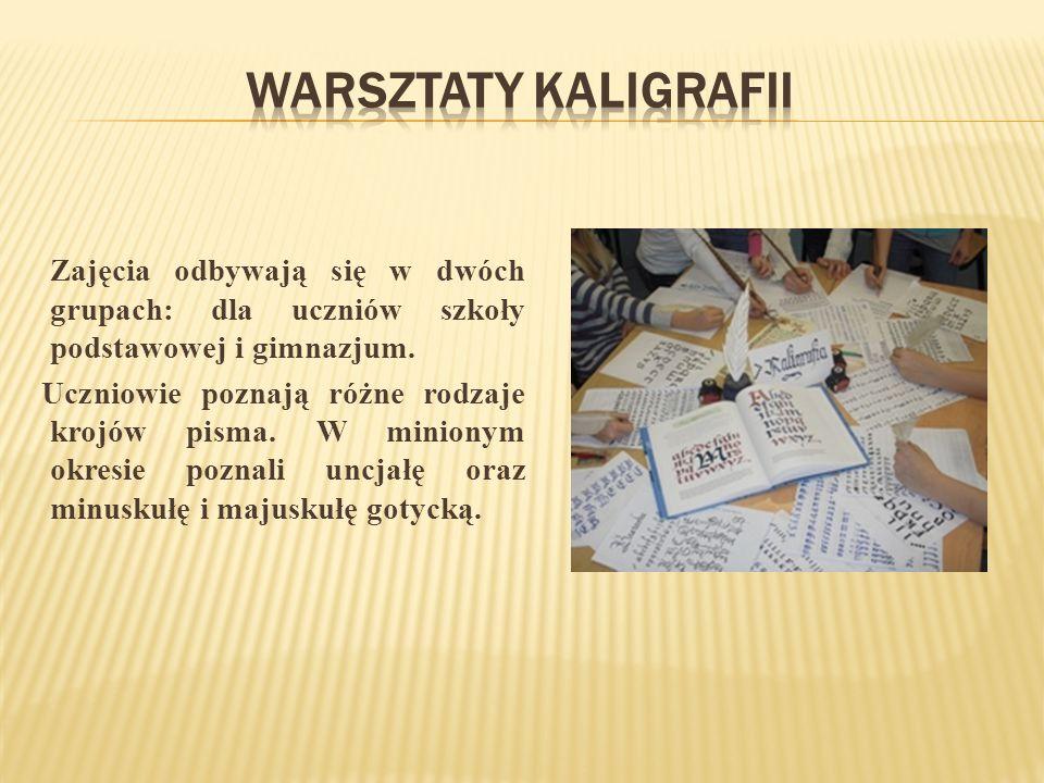 Zajęcia odbywają się w dwóch grupach: dla uczniów szkoły podstawowej i gimnazjum.