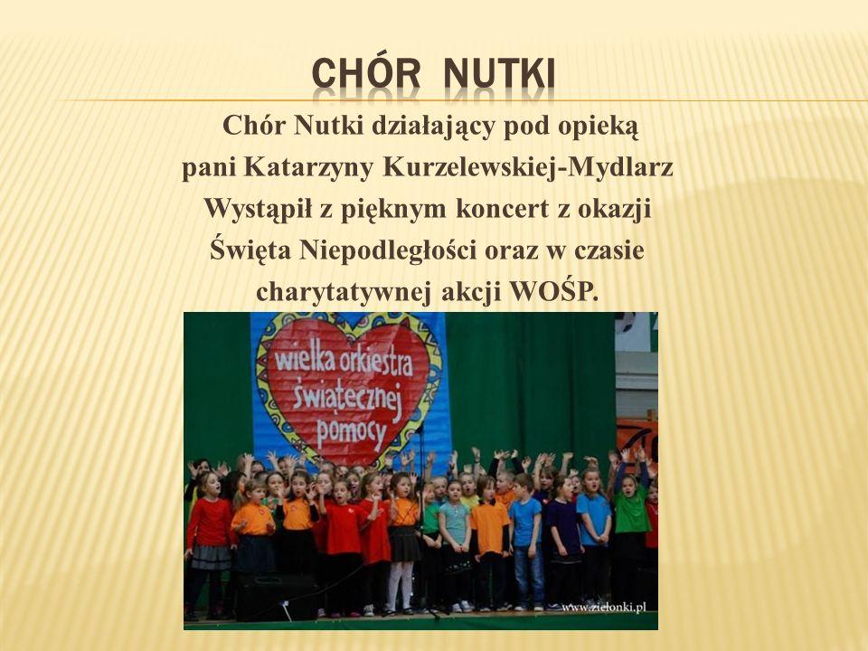 Wszyscy uczniowie grup świetlicowych wzięli udział w Projekcie Europejskim MUUVIT, zachęcającym do aktywności fizycznej.